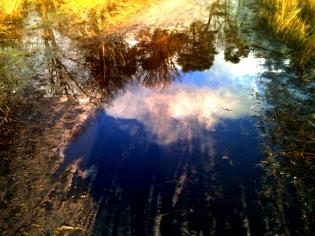 13 / A puddled sky