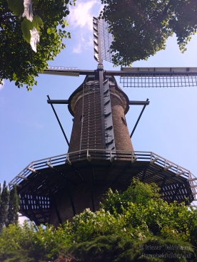 A classic windmill @ Alkmaar, Holland