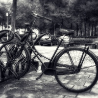 CB&W: Dutch Bike
