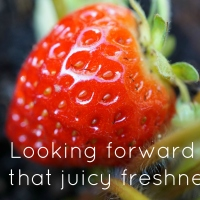Looking forward to that juicy freshness