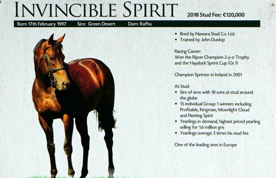 180901-spirit