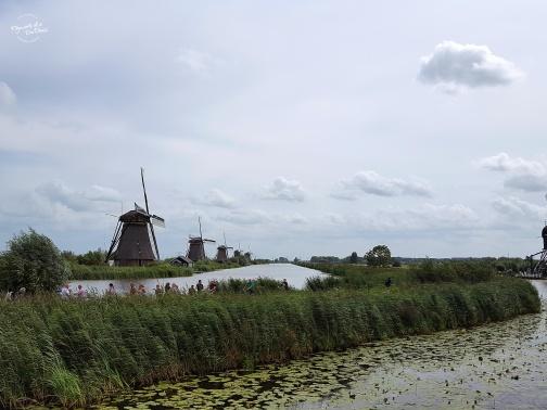 190823windmill