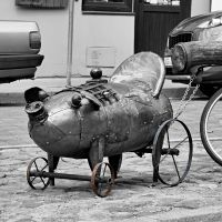 CBW: Pig on Wheels
